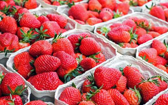 strawberries-fruit-red-sweet-106148.jpeg